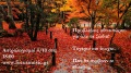 autumn-leaves-wallpaper